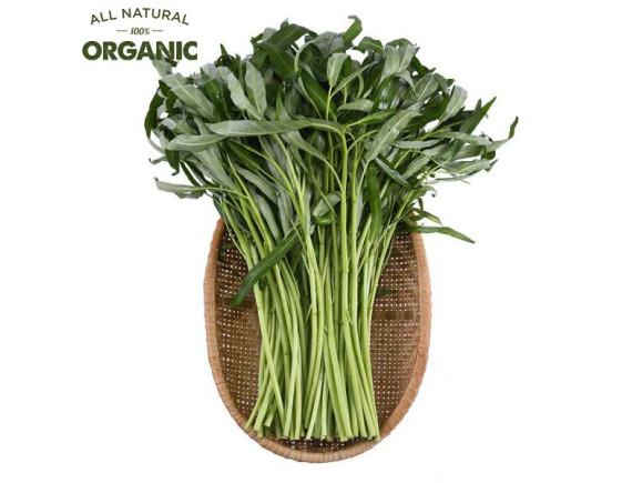Rau Muống Baby Organic Happy Vegi 250G