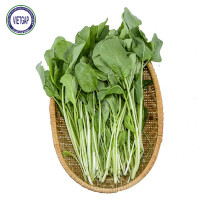 Cải Ngọt Baby 300G